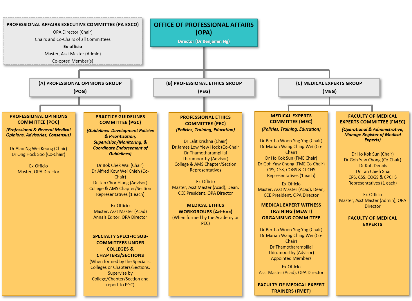 Organizational Chart of the Office of Professional Affairs (reorganized as of January FY2021)
